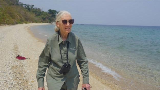 Джейн Гудол: Надеждата
