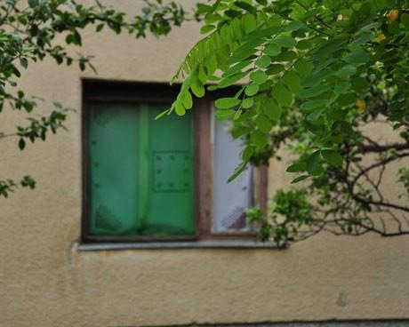 """""""Прозорецът към света"""" на Младич"""