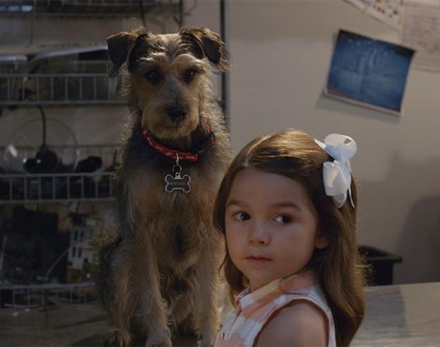 Робо-куче   Robo-Dog (2015)