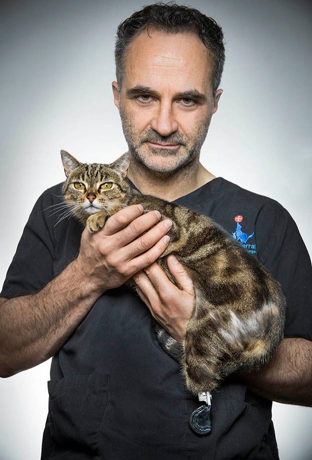 Супер ветеринар