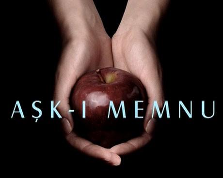 Aşk-ı Memnu (dizi, 2008)