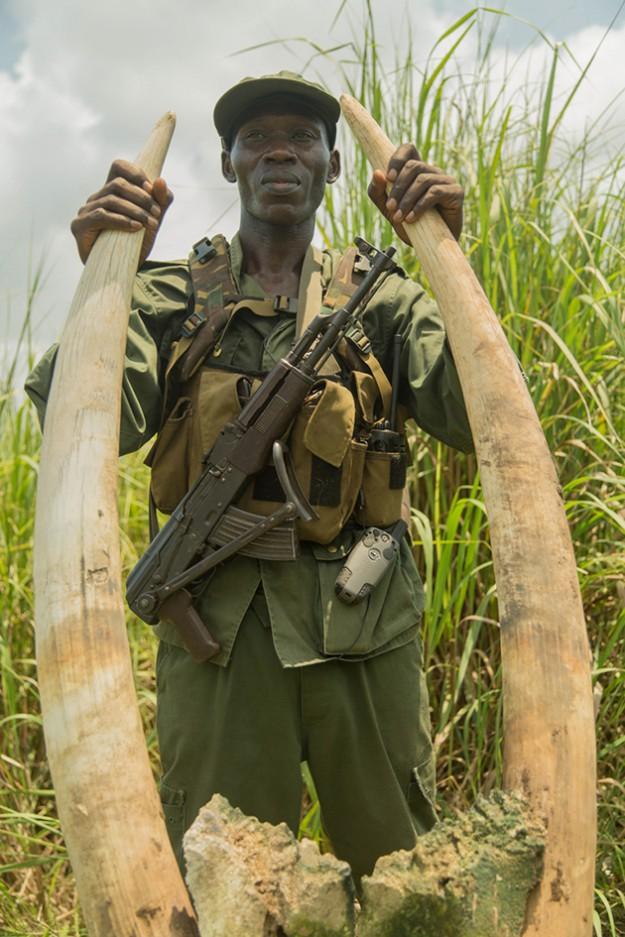 Войната за слонова кост